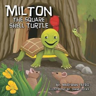 Milton the Square Shell Turtle